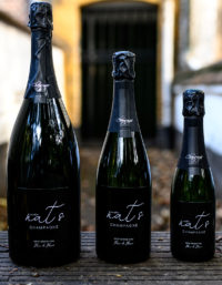 Famille bouteilles NAT'S CHAMPAGNE